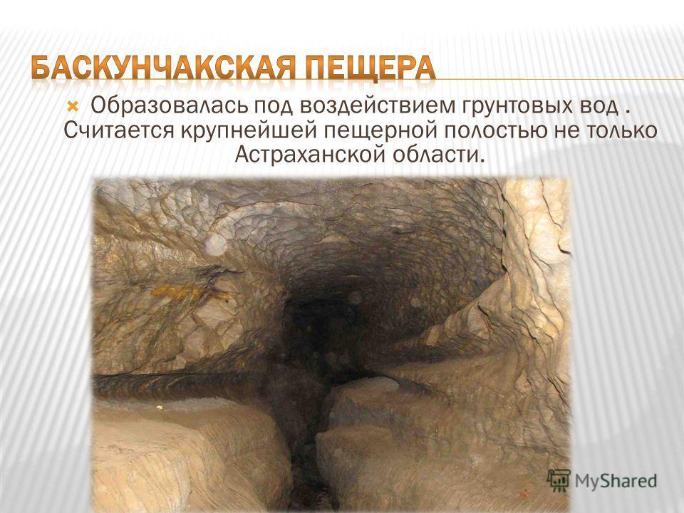 Образовалась под воздействием грунтовых вод. Считается крупнейшей пещерной полостью не только Астраханской области.