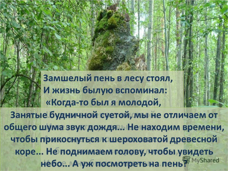 Замшелый пень в лесу стоял, И жизнь былую вспоминал: «Когда-то был я молодой, Шумел зеленою листвой. И пели птицы в вышине, А солнце грело ветви мне. И била жизнь вокруг ключом, И все мне было нипочем…» Замшелый пень в лесу стоял, И жизнь былую вспом