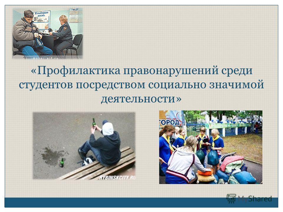 «Профилактика правонарушений среди студентов посредством социально значимой деятельности»