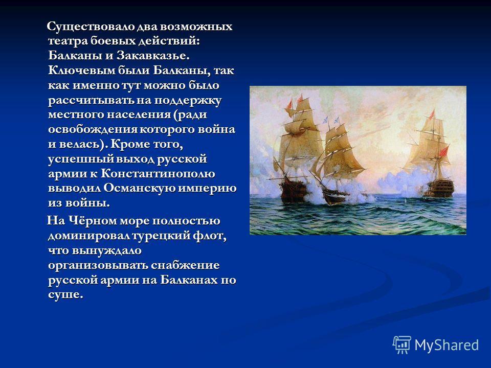 Существовало два возможных театра боевых действий: Балканы и Закавказье. Ключевым были Балканы, так как именно тут можно было рассчитывать на поддержку местного населения (ради освобождения которого война и велась). Кроме того, успешный выход русской