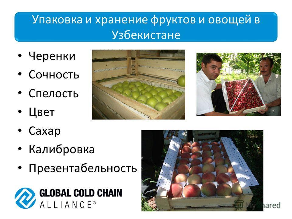 Упаковка и хранение фруктов и овощей в Узбекистане Черенки Сочность Спелость Цвет Сахар Калибровка Презентабельность