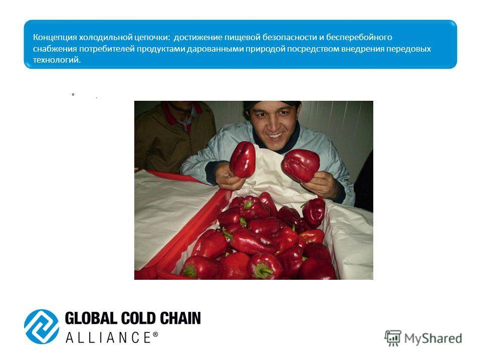 Концепция холодильной цепочки: достижение пищевой безопасности и бесперебойного снабжения потребителей продуктами дарованными природой посредством внедрения передовых технологий..