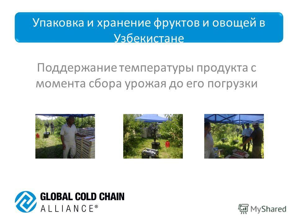 Упаковка и хранение фруктов и овощей в Узбекистане Поддержание температуры продукта с момента сбора урожая до его погрузки