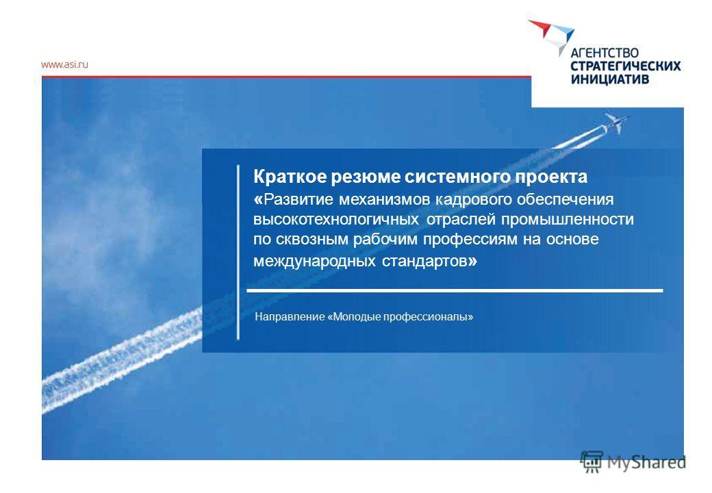 Краткое резюме системного проекта « Развитие механизмов кадрового обеспечения высокотехнологичных отраслей промышленности по сквозным рабочим профессиям на основе международных стандартов » Направление «Молодые профессионалы»