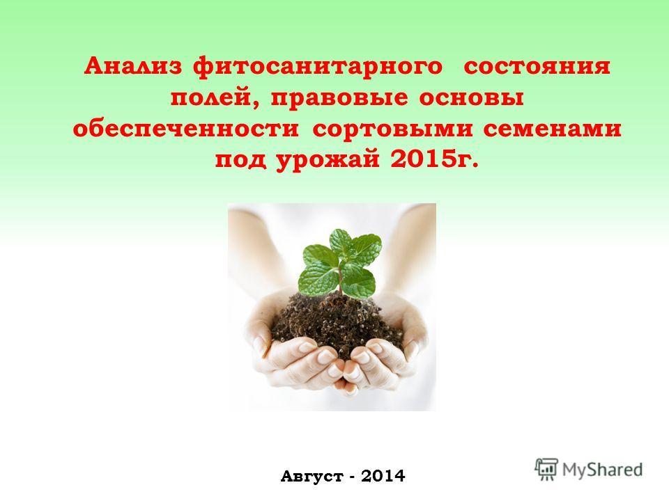 Анализ фитосанитарного состояния полей, правовые основы обеспеченности сортовыми семенами под урожай 2015 г. Август - 2014