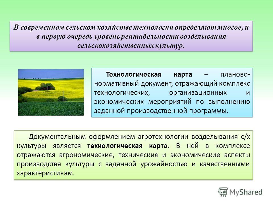 Образец Фитосанитарный Паспорт Поля - фото 5