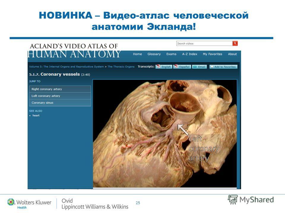 25 НОВИНКА – Видео-атлас человеческой анатомии Экланда!