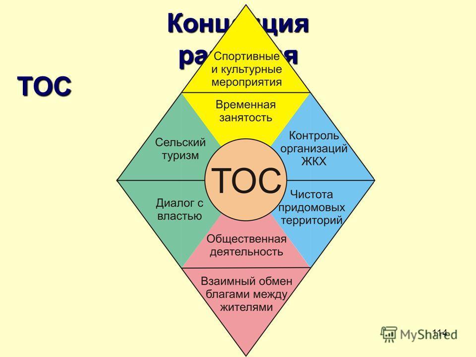 114 Концепция развития ТОС