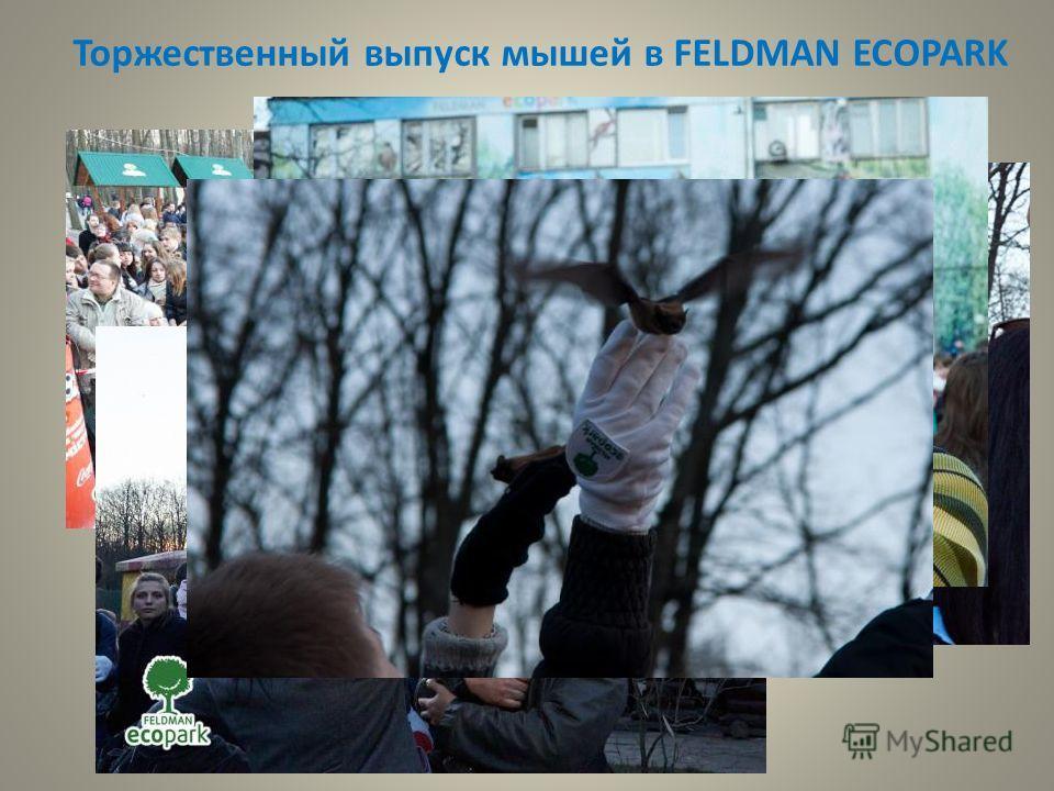 Торжественный выпуск мышей в FELDMAN ECOPARK