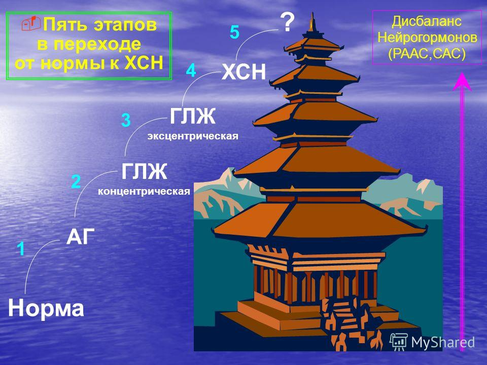 Норма АГ ГЛЖ концентрическая ГЛЖ эксцентрическая ХСН ? 1 2 3 4 5 Пять этапов в переходе от нормы к ХСН Дисбаланс Нейрогормонов (РААС,САС)
