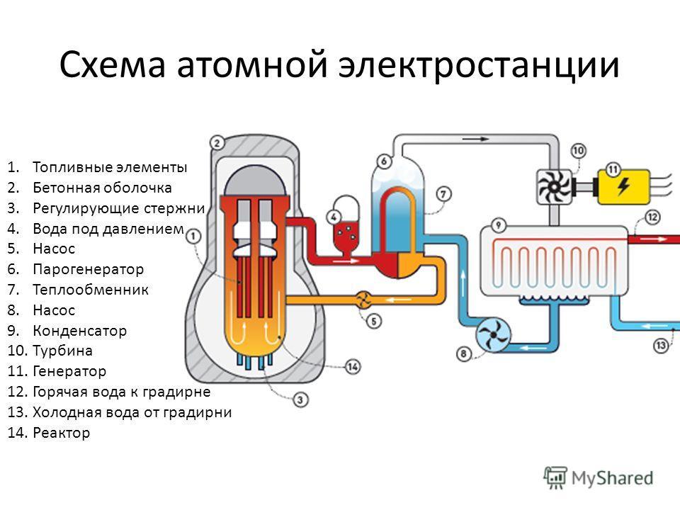 Схема атомной электростанции 1. Топливные элементы 2. Бетонная оболочка 3. Регулирующие стержни 4. Вода под давлением 5. Насос 6. Парогенератор 7. Теплообменник 8. Насос 9. Конденсатор 10. Турбина 11. Генератор 12. Горячая вода к градирне 13. Холодна