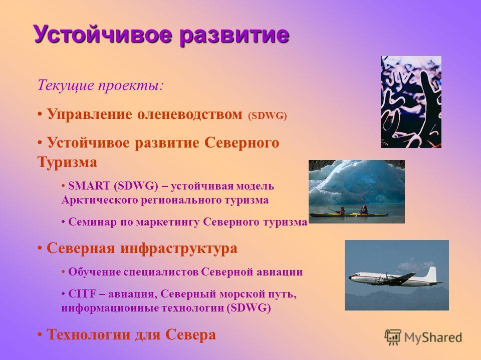 Текущие проекты: Управление оленеводством (SDWG) Устойчивое развитие Северного Туризма SMART (SDWG) – устойчивая модель Арктического регионального туризма Семинар по маркетингу Северного туризма Северная инфраструктура Обучение специалистов Северной
