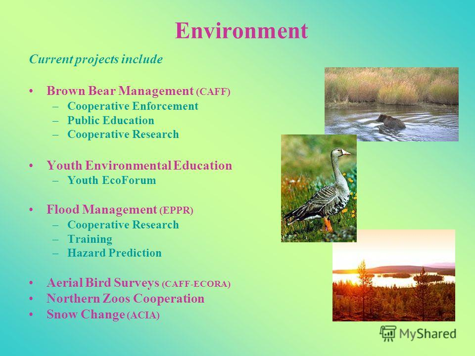 Environment Current projects include Brown Bear Management (CAFF) –Cooperative Enforcement –Public Education –Cooperative Research Youth Environmental Education –Youth EcoForum Flood Management (EPPR) –Cooperative Research –Training –Hazard Predictio
