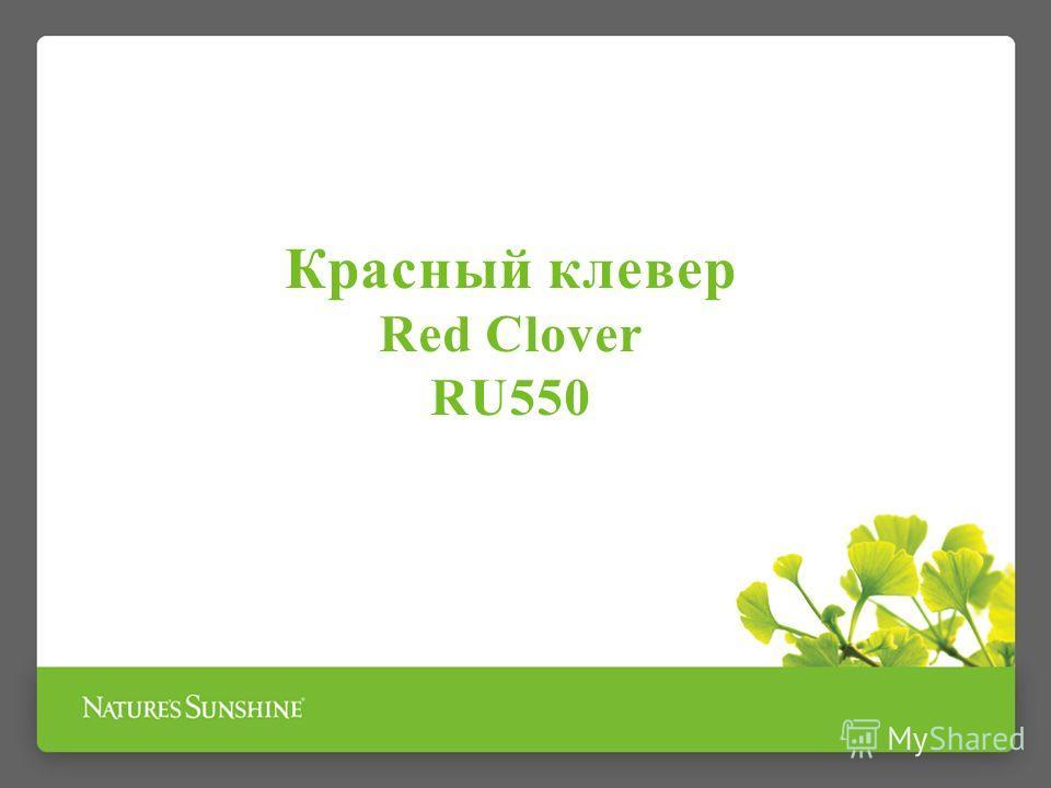 Красный клевер Red Clover RU550