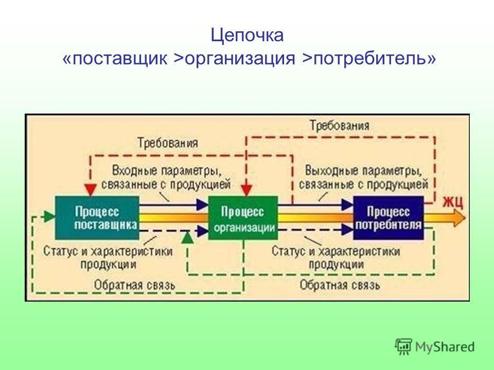 Цепочка «поставщик >организация >потребитель»