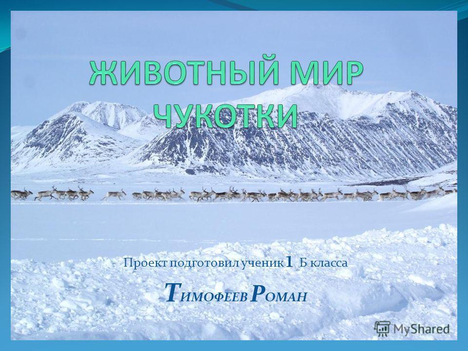 Проект подготовил ученик 1 Б класса Т ИМОФЕЕВ Р ОМАН