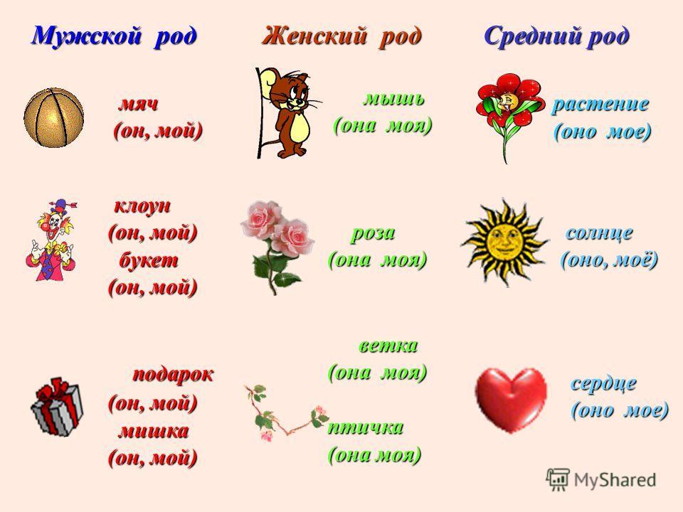 Женский род роза (она моя) растение (оно мое) ветка (она моя) птичка Мужской род Средний род мяч мяч (он, мой) (он, мой) клоун клоун (он, мой) (он, мой) букет букет (он, мой) (он, мой) подарок подарок (он, мой) (он, мой) мишка мишка (он, мой) (он, мо