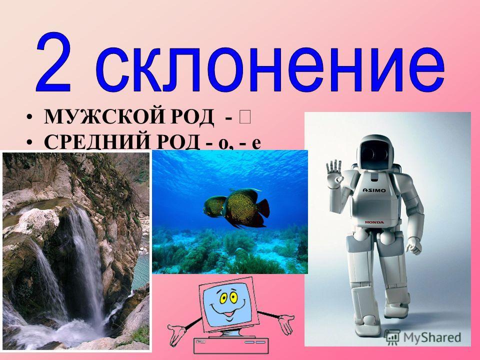 МУЖСКОЙ РОД - СРЕДНИЙ РОД - о, - е