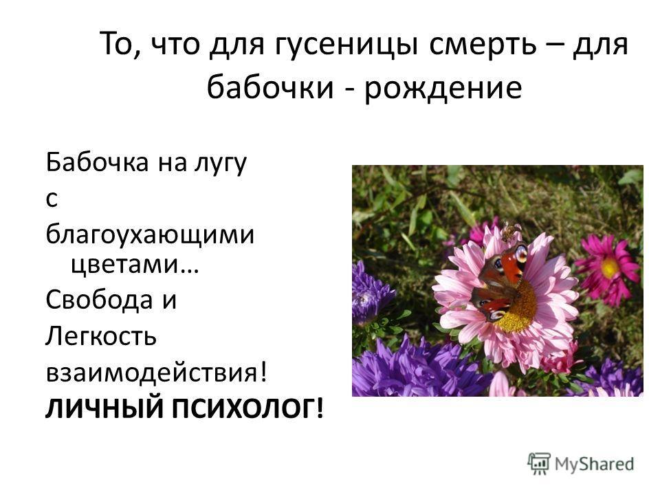 То, что для гусеницы смерть – для бабочки - рождение Бабочка на лугу с благоухающими цветами… Свобода и Легкость взаимодействия! ЛИЧНЫЙ ПСИХОЛОГ!