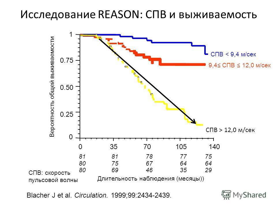 Blacher J et al. Circulation. 1999;99:2434-2439. Вероятность общей выживаемости 81 78 7775 8075 67 64 8069 46 3529 Длительность наблюдения (месяцы)) 0 1 03570105140 0.50 0.75 0.25 СПВ < 9,4 м/сек 9,4 СПВ 12,0 м/сек СПВ > 12,0 м/сек Исследование REASO