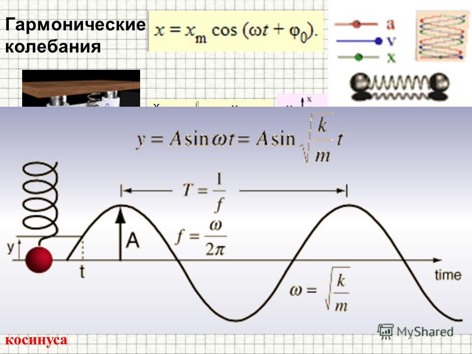 Гармонические колебания Гармоническими колебаниями называются такие колебательные движения, при которых смещение тела от положения равновесия совершается по закону синуса или косинуса
