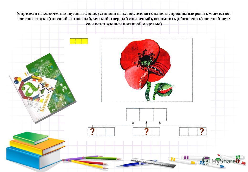 (определить количество звуков в слове, установить их последовательность, проанализировать «качество» каждого звука (гласный, согласный, мягкий, твердый согласный), вспомнить (обозначить) каждый звук соответствующей цветовой моделью)