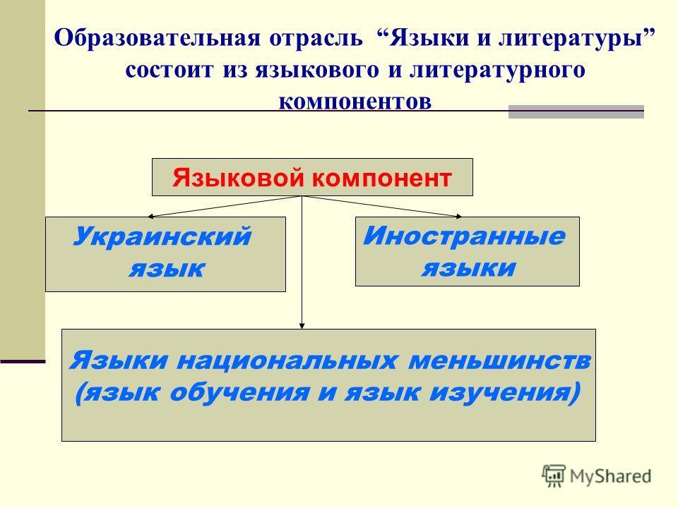 Образовательная отрасль Языки и литературы состоит из языкового и литературного компонентов Языковой компонент Украинский язык Иностранные языки Языки национальных меньшинств (язык обучения и язык изучения)