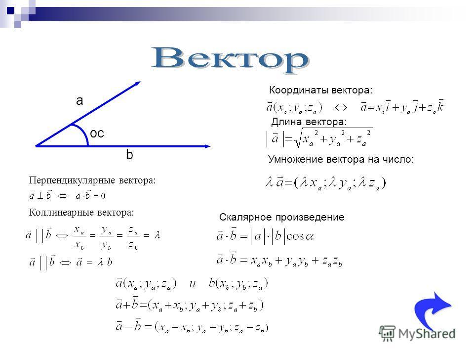 а b ос Координаты вектора: Длина вектора: Умножение вектора на число: Перпендикулярные вектора: Коллинеарные вектора: Скалярное произведение
