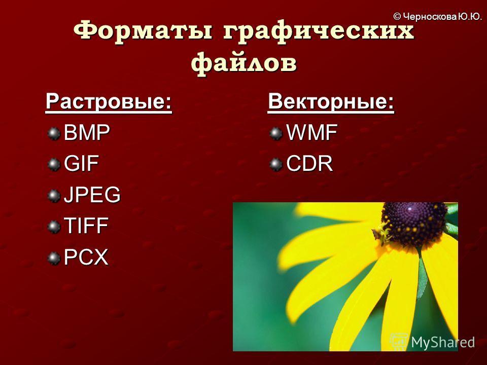 © Черноскова Ю.Ю. Форматы графических файлов Растровые:BMPGIFJPEGTIFFPCXВекторные:WMFCDR