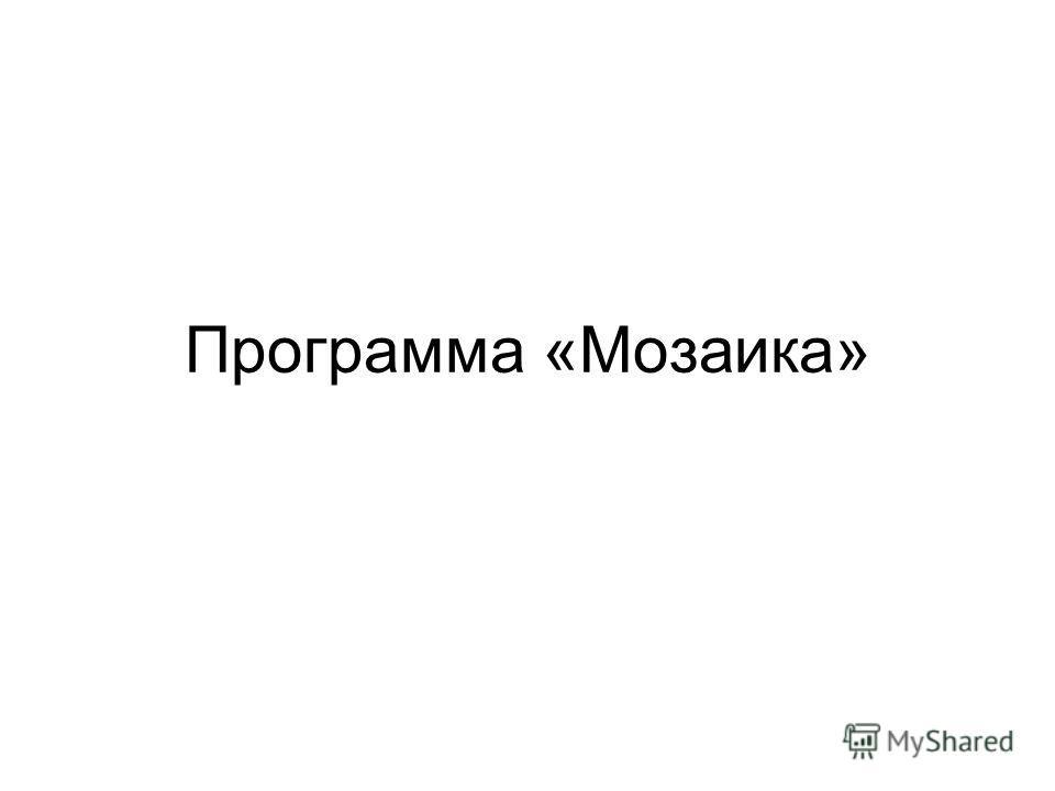 Программа «Мозаика»