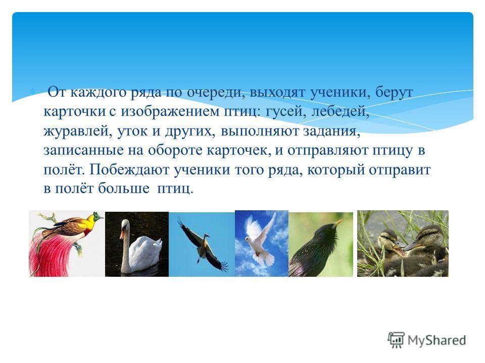 От каждого ряда по очереди, выходят ученики, берут карточки с изображением птиц: гусей, лебедей, журавлей, уток и других, выполняют задания, записанные на обороте карточек, и отправляют птицу в полёт. Побеждают ученики того ряда, который отправит в п