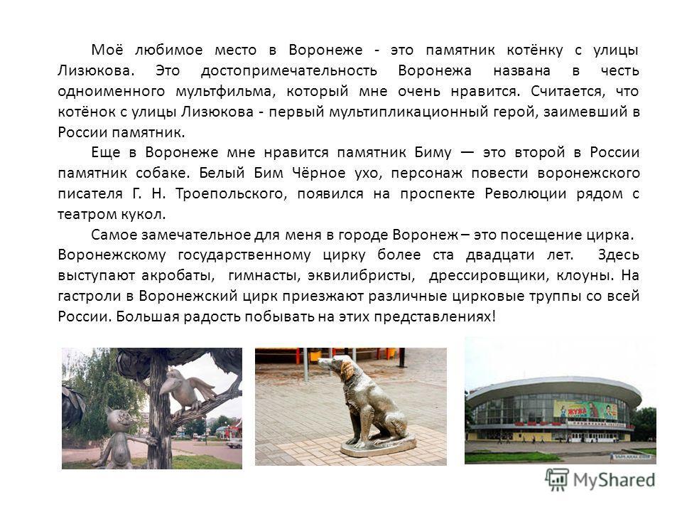Моё любимое место в Воронеже - это памятник котёнку с улицы Лизюкова. Это достопримечательность Воронежа названа в честь одноименного мультфильма, который мне очень нравится. Считается, что котёнок с улицы Лизюкова - первый мультипликационный герой,