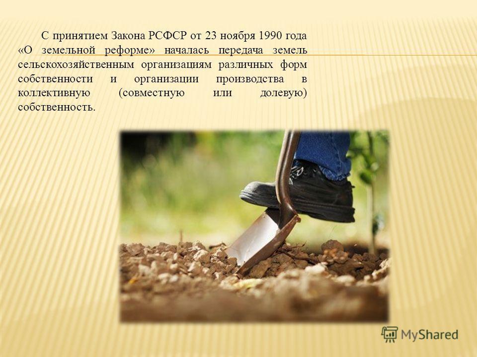С принятием Закона РСФСР от 23 ноября 1990 года «О земельной реформе» началась передача земель сельскохозяйственным организациям различных форм собственности и организации производства в коллективную (совместную или долевую) собственность.