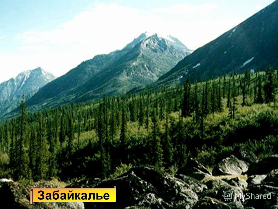 Алтай Эльбрус УралСаяны Забайкалье