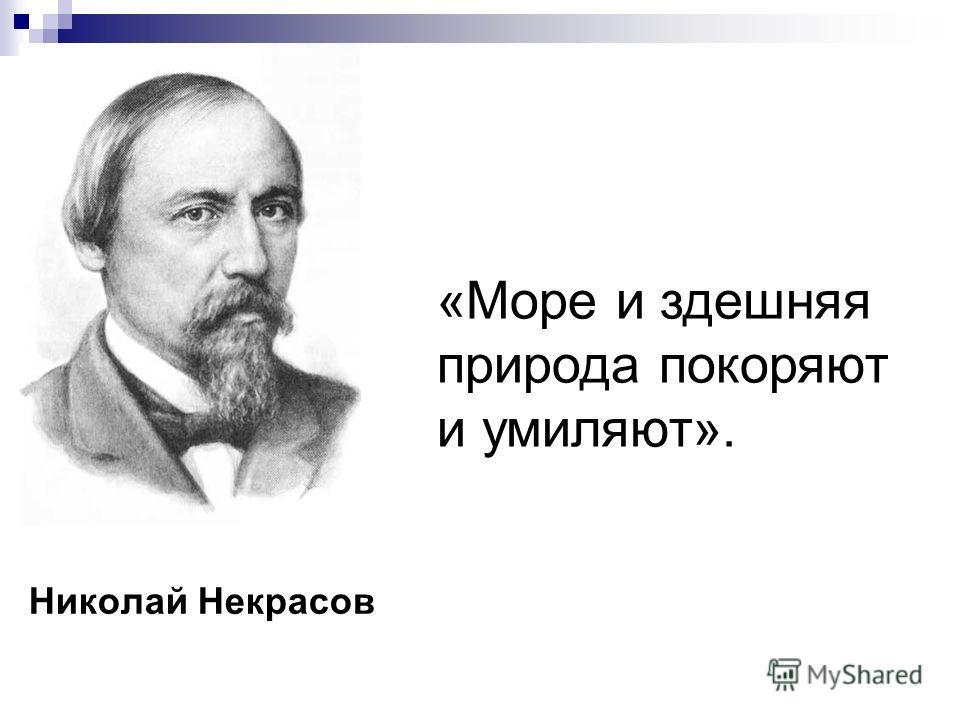 Николай Некрасов «Море и здешняя природа покоряют и умиляют».