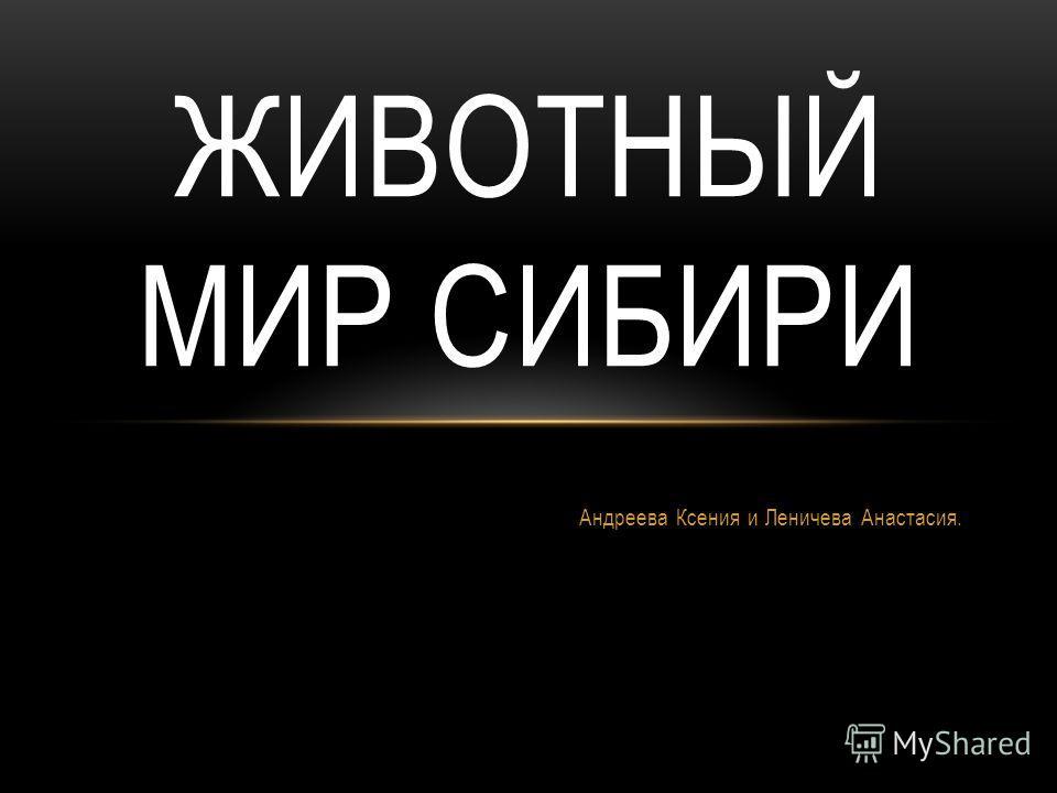 Андреева Ксения и Леничева Анастасия. ЖИВОТНЫЙ МИР СИБИРИ