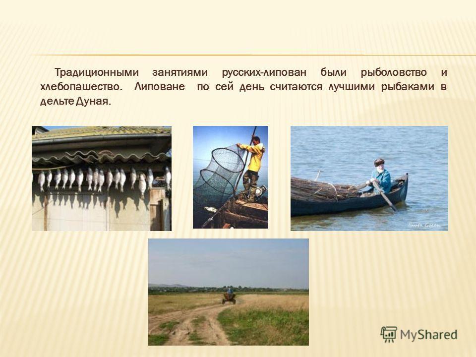 Традиционными занятиями русских-липован были рыболовство и хлебопашество. Липоване по сей день считаются лучшими рыбаками в дельте Дуная.