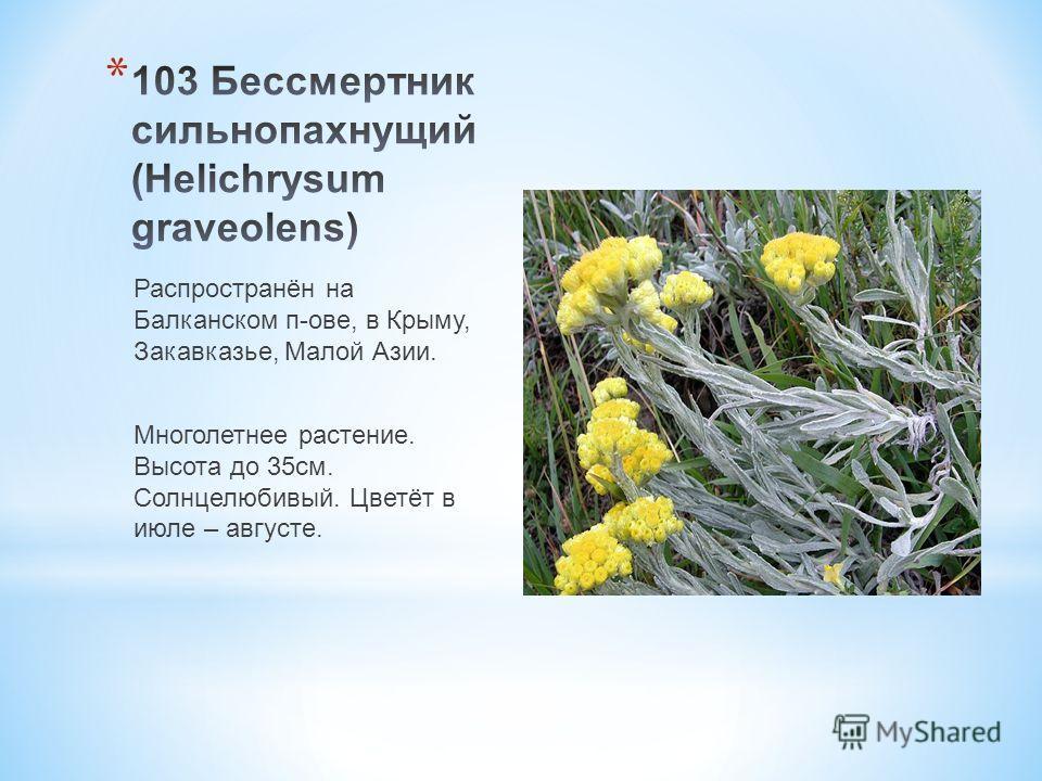 Распространён на Балканском п-ове, в Крыму, Закавказье, Малой Азии. Многолетнее растение. Высота до 35 см. Солнцелюбивый. Цветёт в июле – августе.