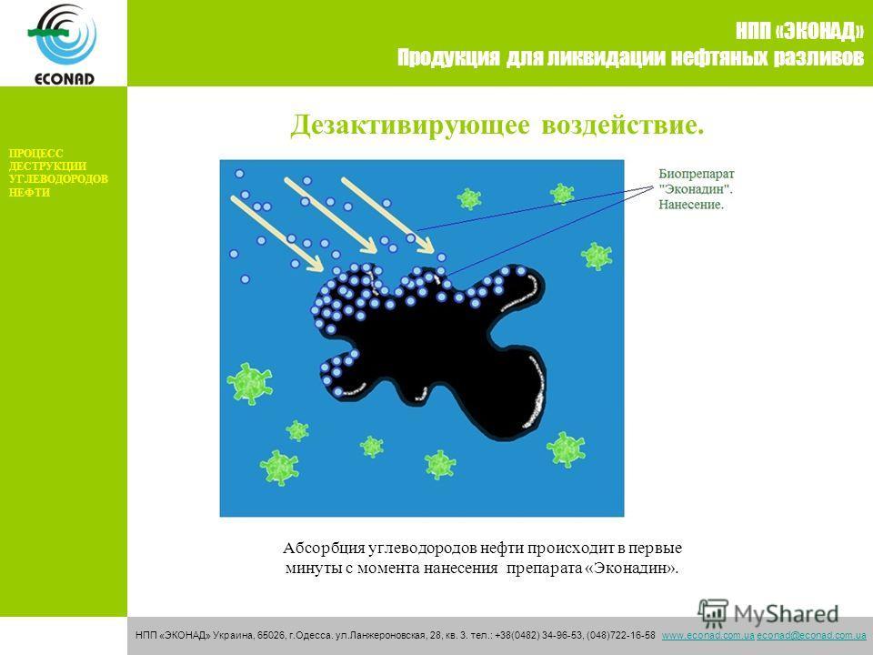 Дезактивирующее воздействие. НПП «ЭКОНАД» Продукция для ликвидации нефтяных разливов НПП «ЭКОНАД» Украина, 65026, г.Одесса. ул.Ланжероновская, 28, кв. 3. тел.: +38(0482) 34-96-53, (048)722-16-58 www.econad.com.ua econad@econad.com.uawww.econad.com.ua