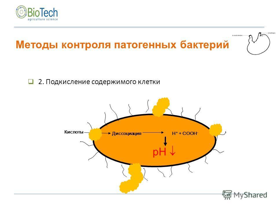 2. Подкисление содержимого клетки Диссоциация H + + COOH - pH Кислоты Методы контроля патогенных бактерий