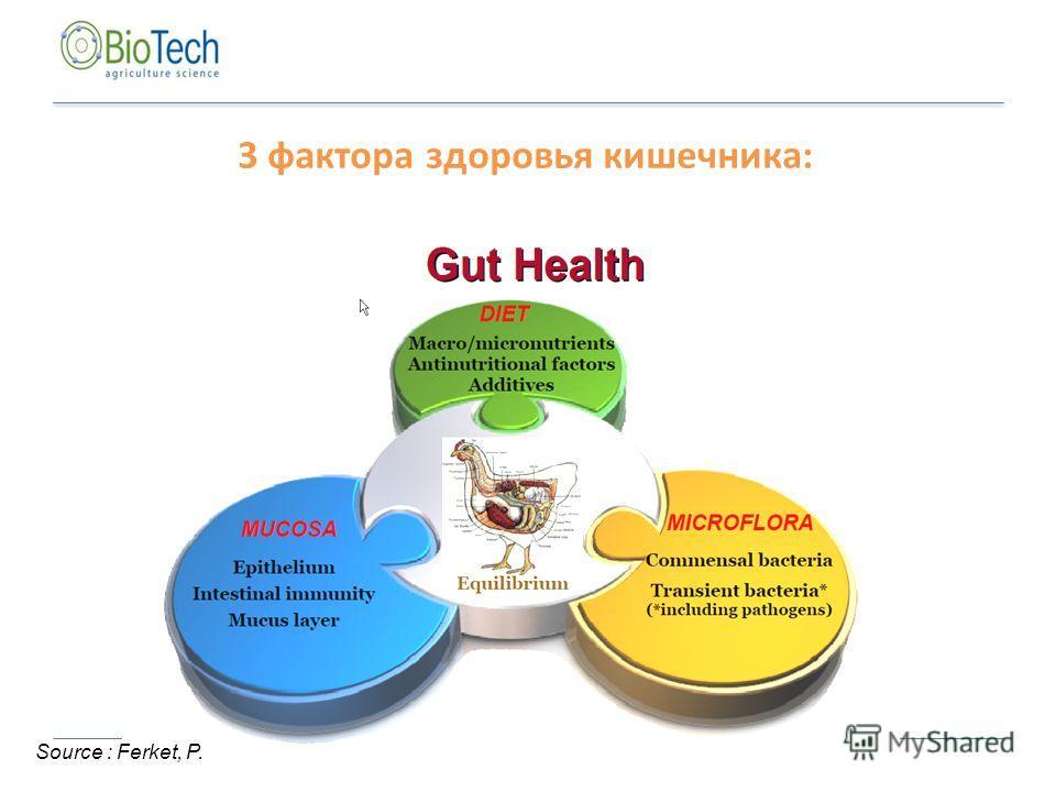 Source : Ferket, P. 3 фактора здоровья кишечника: