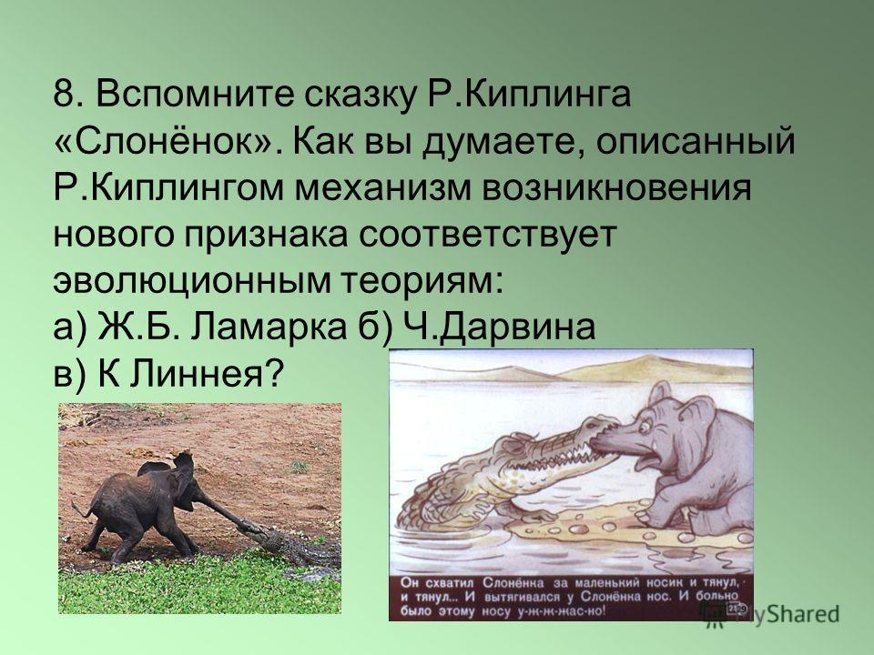 8. Вспомните сказку Р.Киплинга «Слонёнок». Как вы думаете, описанный Р.Киплингом механизм возникновения нового признака соответствует эволюционным теориям: а) Ж.Б. Ламарка б) Ч.Дарвина в) К Линнея?