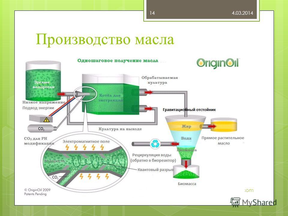 Производство масла 4.03.2014 tatici@gmail.com 14
