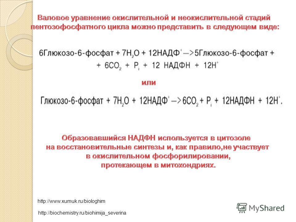 http://www.xumuk.ru/biologhim http://biochemistry.ru/biohimija_severina