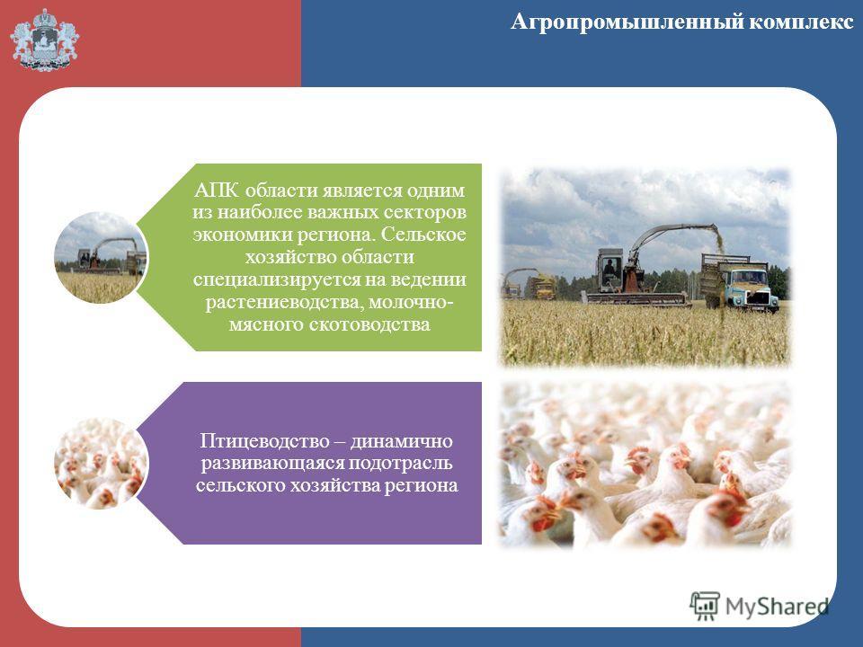 АПК области является одним из наиболее важных секторов экономики региона. Сельское хозяйство области специализируется на ведении растениеводства, молочно- мясного скотоводства Птицеводство – динамично развивающаяся подотрасль сельского хозяйства реги