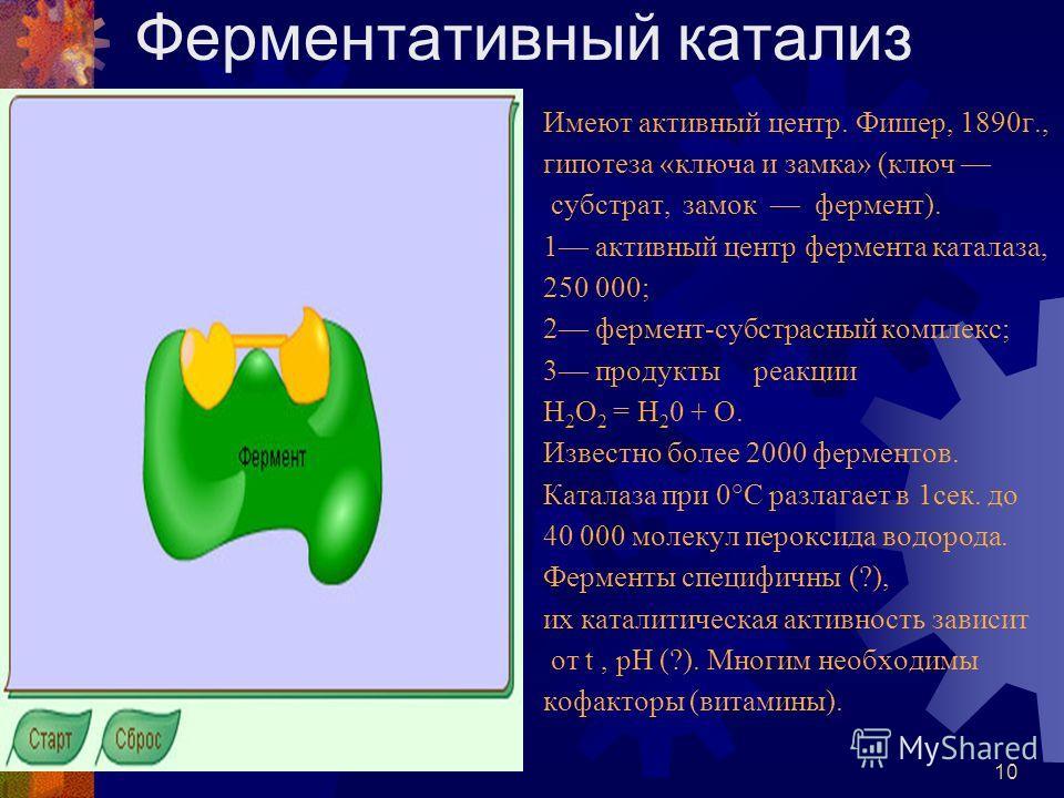 9 СТРОЕНИЕ КЛЕТОЧНОЙ МЕМБРАНЫ (структурная роль белков)
