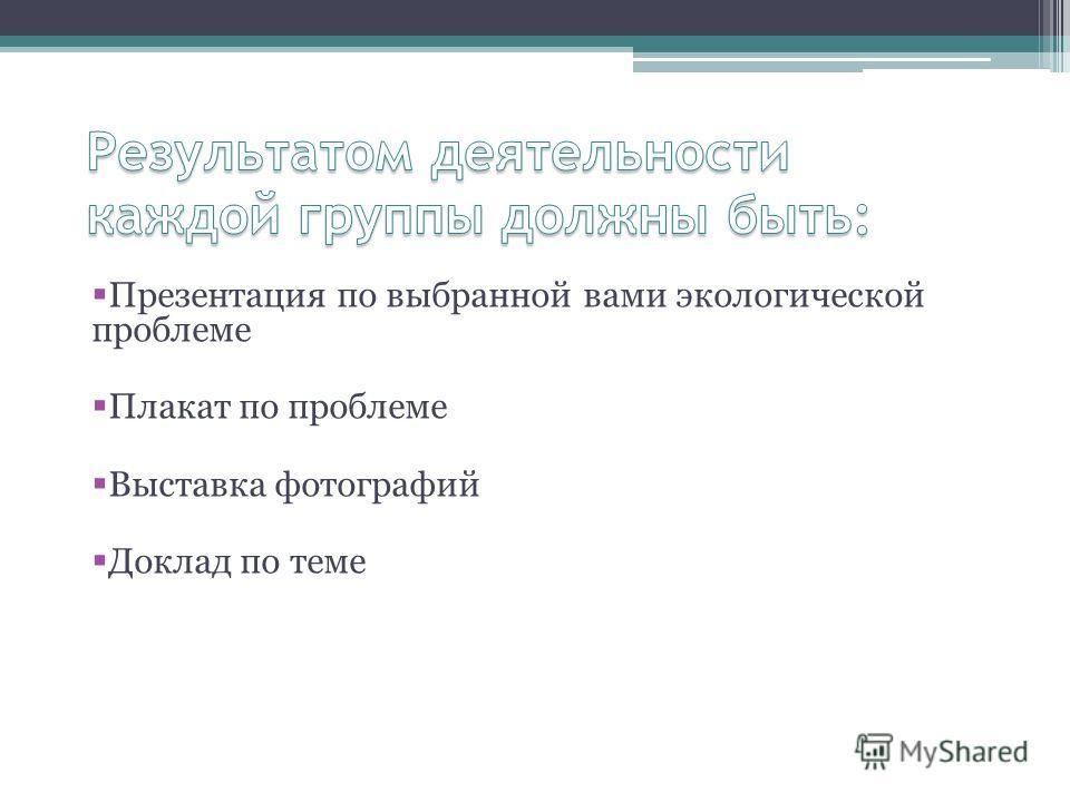 Презентация по выбранной вами экологической проблеме Плакат по проблеме Выставка фотографий Доклад по теме