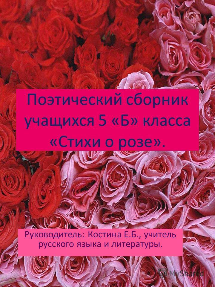 Поэтический сборник учащихся 5 «Б» класса «Стихи о розе». Руководитель: Костина Е.Б., учитель русского языка и литературы.
