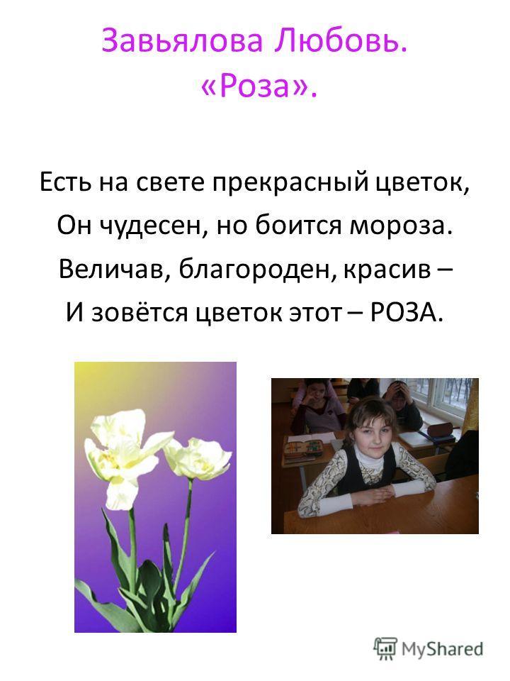 Завьялова Любовь. «Роза». Есть на свете прекрасный цветок, Он чудесен, но боится мороза. Величав, благороден, красив – И зовётся цветок этот – РОЗА.