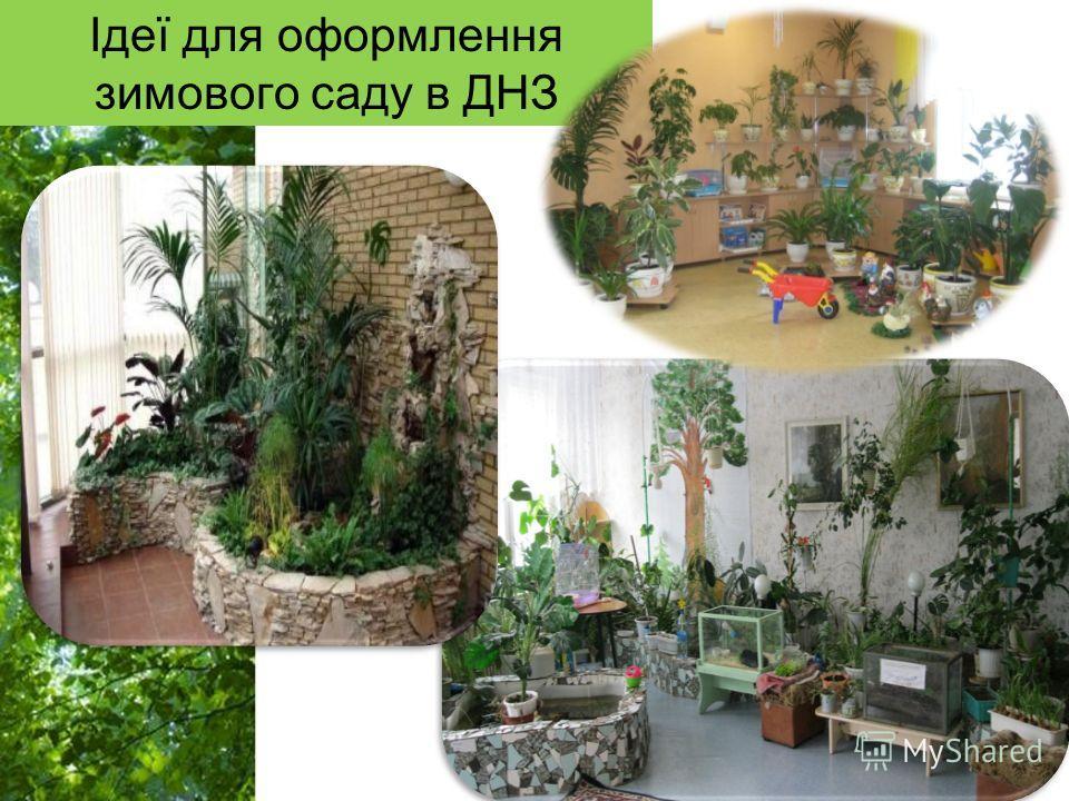 Free Powerpoint Templates Page 17 Ідеї для оформления зимового саду в ДНЗ